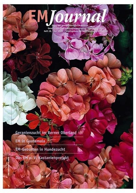 EMJournal 28