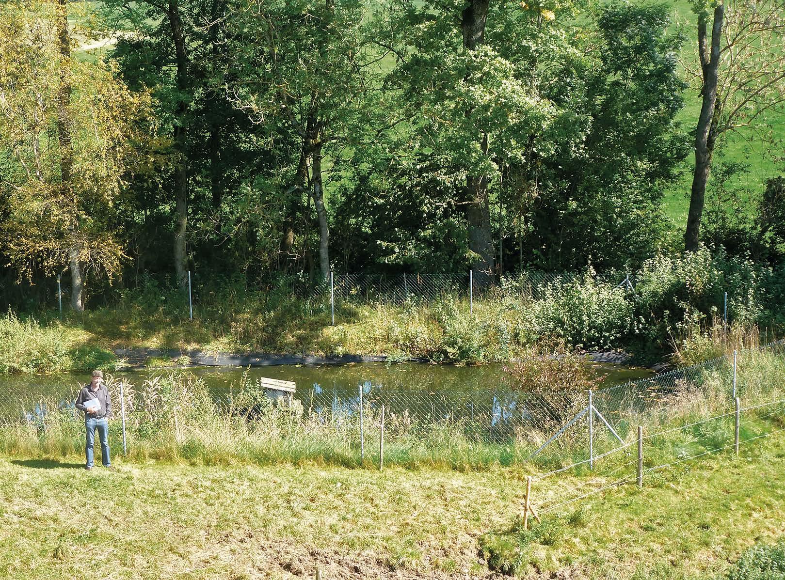 Der Klärteich für vier Höfe, seit 10 Jahren mit EM behandelt, funktioniert tadellos.