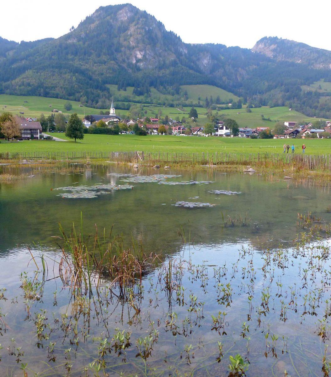 Auch der Klärteich für das Naturschwimmbad in Bad Hindelang wird vom EMTechnologiezentrum Süd erfolgreich betreut.