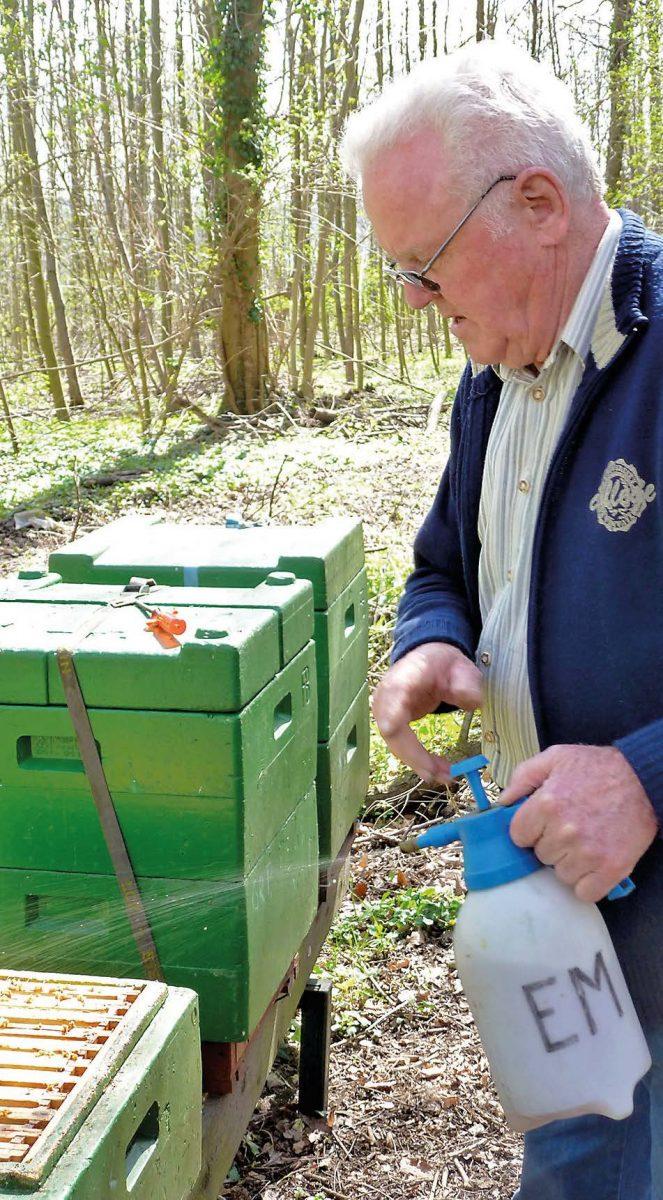 EM Spritzung Bienenstock