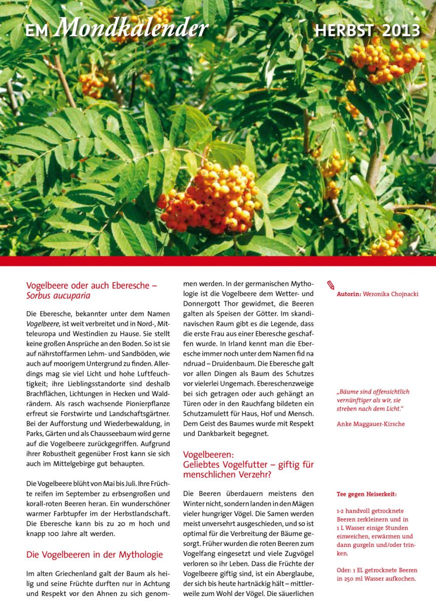 EM Mondkalender 45 Titelblatt