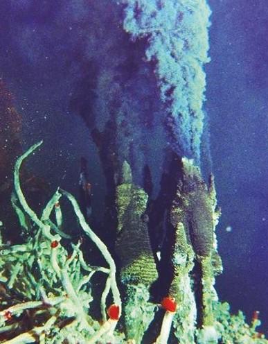 Schwarze Raucher in der Tiefsee, an deren Rändern ein vielfältiges Mikrobenleben existiert.