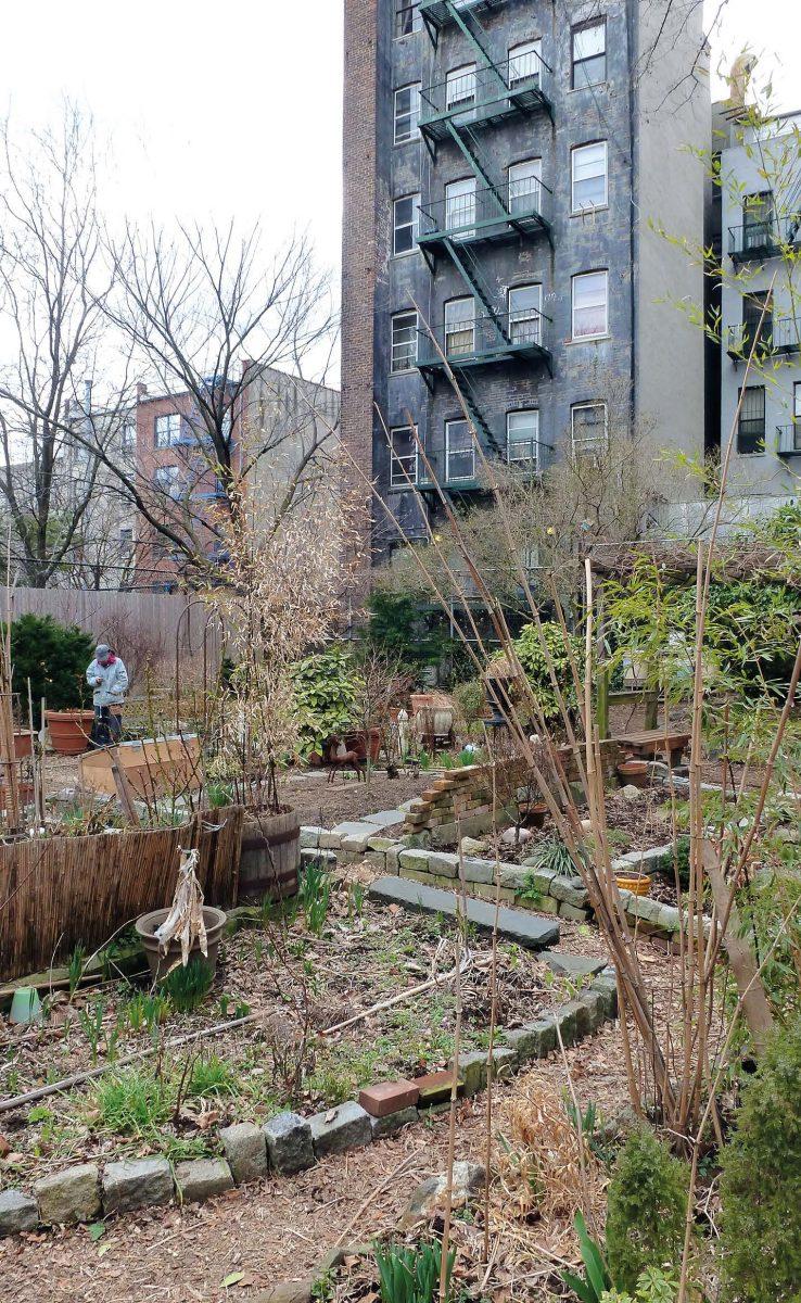 Die meisten Community Gärten sind auf dem Grund abgerissener Häuser entstanden, in der oft tristen Umgebung eine Labsal für Auge und Seele.