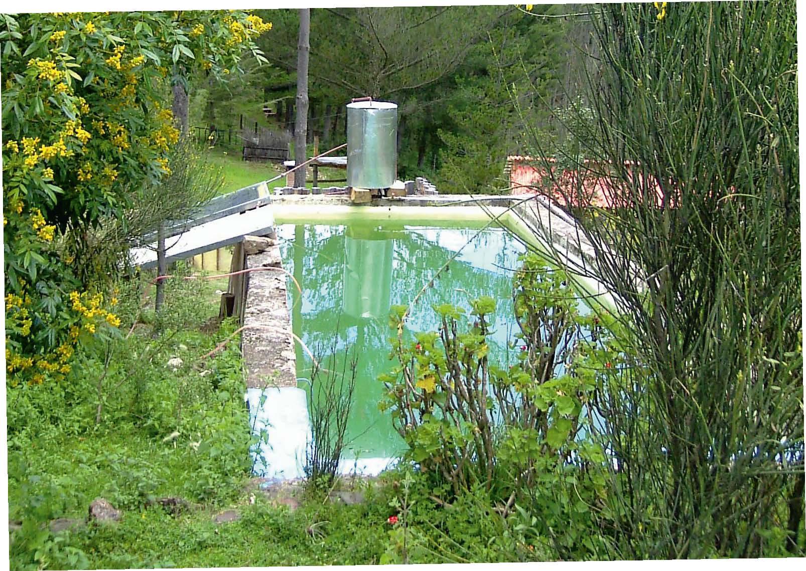 Die Zisterne, die im Sommer gern zum Schwimmen genutzt wird, bleibt durch EM-Keramik klar.