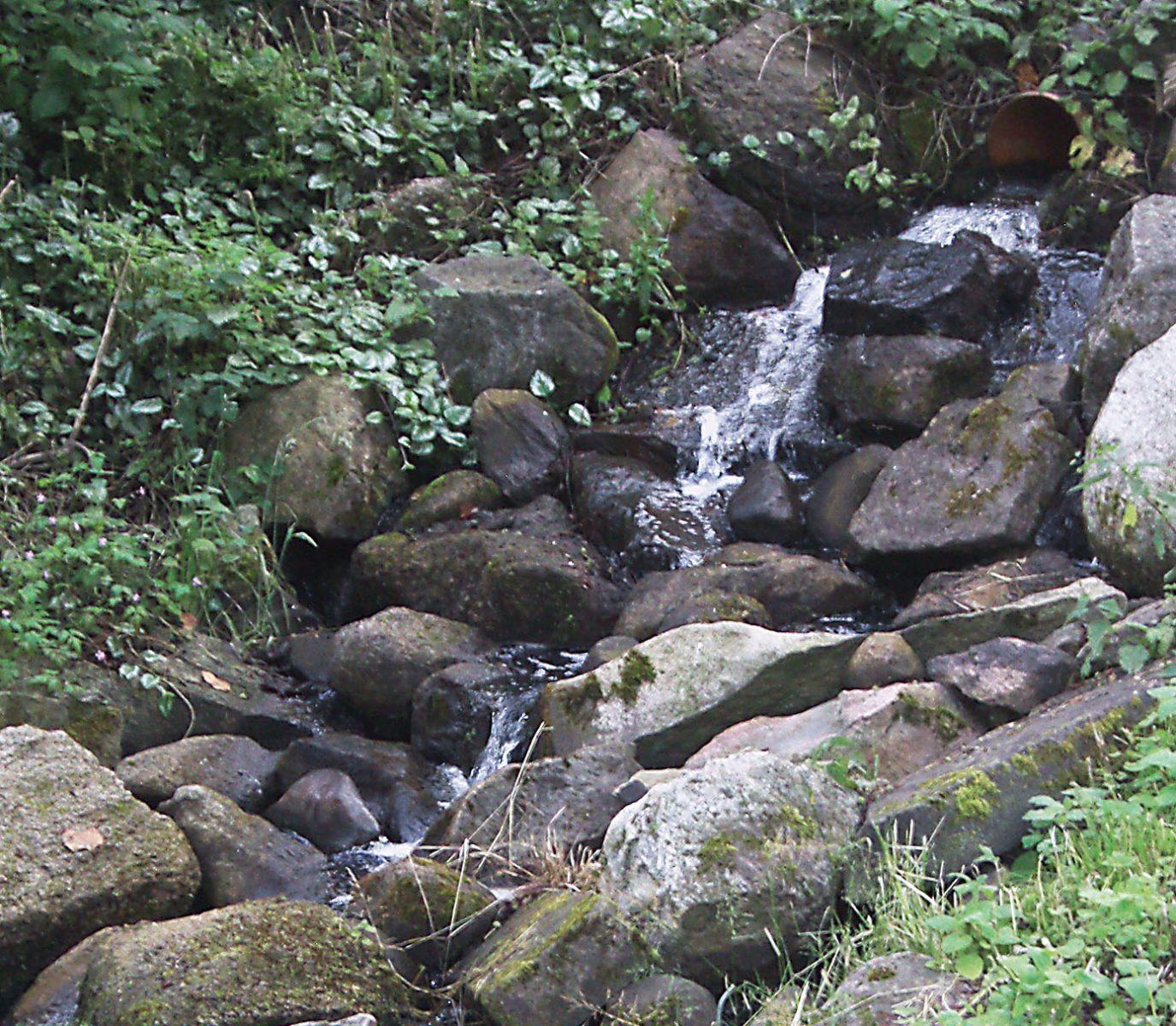 """Der wiederhergestellte """"Wasserfall"""" speist die Pferdeschwemme."""