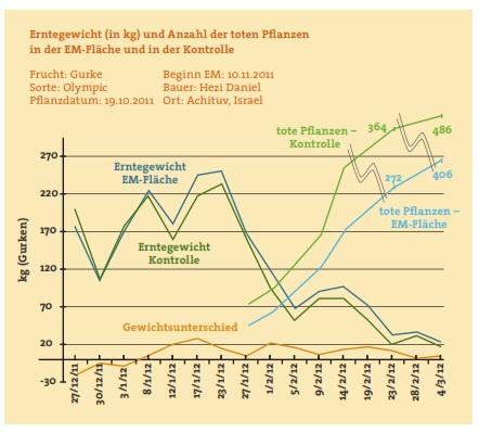 EM Israel Grafik 02