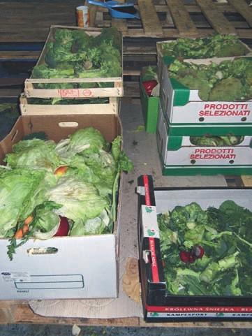 Obst und Gemüse werden geputzt und die Reste zu Bokashi verarbeitet.