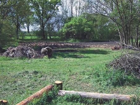 Der Garten während der Aufräumarbeiten