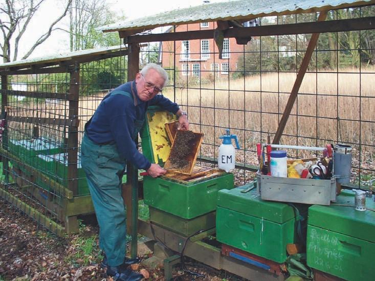 Friedrich Blase bei der Behandlung eines Bienenkastens.