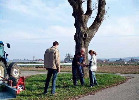 Peter Blums Rezept für je einen Baum: