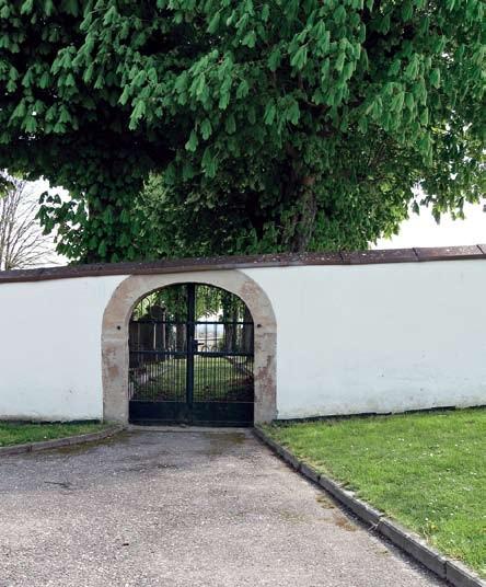 Der jüdische Friedhof in Ihringen am Kaiserstuhl mit den prächtigen Kastanien