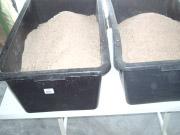 Getreidespelzen in den Wannen