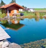 Dank EM bleibt der Teich nach anfänglichen starken Problemen klar und sauber.