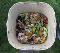 Der klassische Bokashi-Eimer mit Auslaßhahn für überschüssige Flüssigkeit wird kontinuierlich mit organischen Abfällen befüllt.