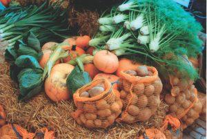 EM-Gemüse im Herbst