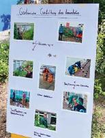 Schüler der 8. und 9. Klasse gestalteten Infotafeln