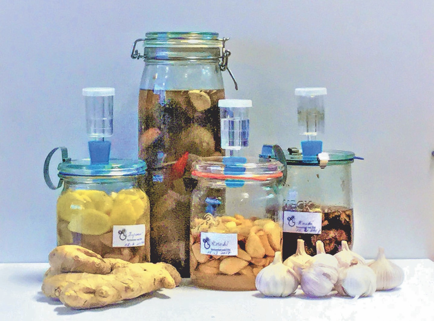 Mit EM fermentiert sind Knoblauch und Ingwer noch wertvoller.