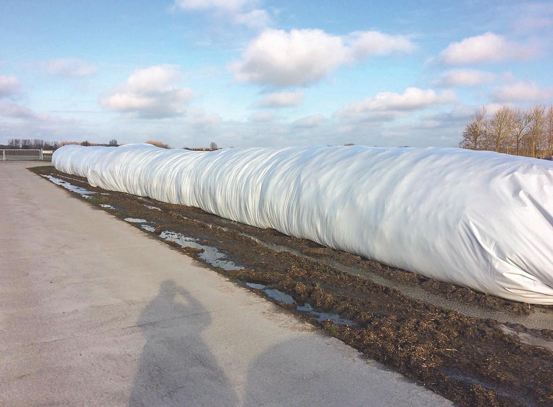 2016 wurden in Hengelo 900 Tonnen Laub in solchen Schläuchen über den Winter fermentiert.