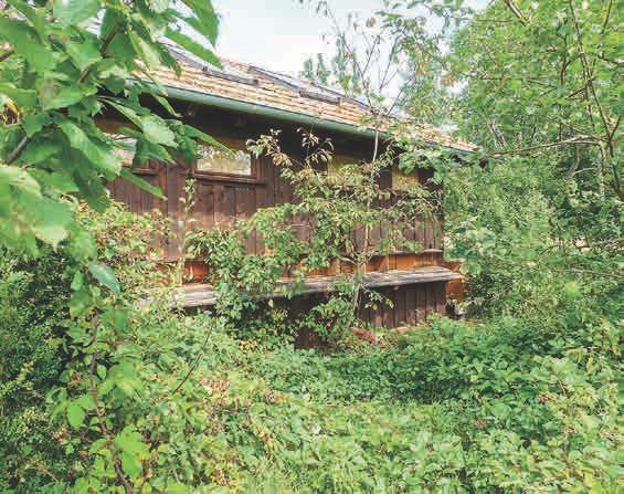 Das Bienenhaus im Garten