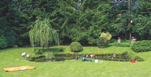 In einem gepflegten Garten will auch der Teich gut gepflegt werden.