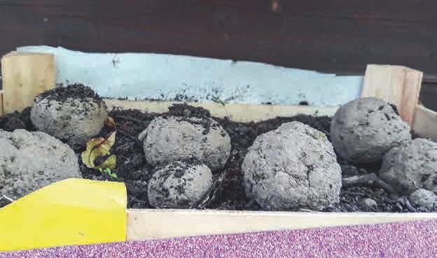 Selbst hergestellte Samenbomben aus Erde, Ton, EMa- Wasser, Keramikpulver und Blumensamen