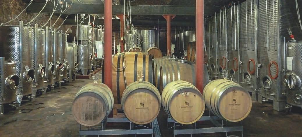 Ein moderner Keller muss alle Möglichkeiten der Weinherstellung nutzen. Das Besondere hier: Es riecht frisch und angenehm.