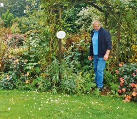 EM-gepflegter naturnaher Blumengarten